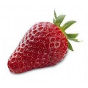Jordbær 'Korona' - 6 stk. i plastbakke