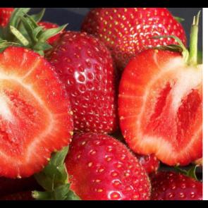 Jordbær 'Malwina'- 6 stk. i plastbakke