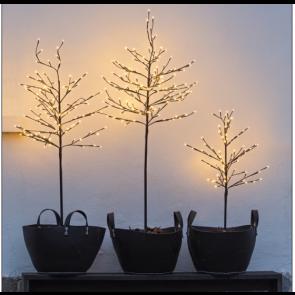 Lystræ fra Sirius med 160 LED lys NOAH Brun