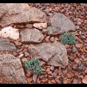 Granit miljø rød Øland1 ton i Storsæk. - LEVERING JYLLAND/FYN